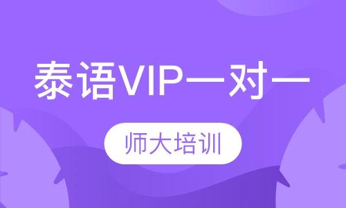 泰语VIP一对一