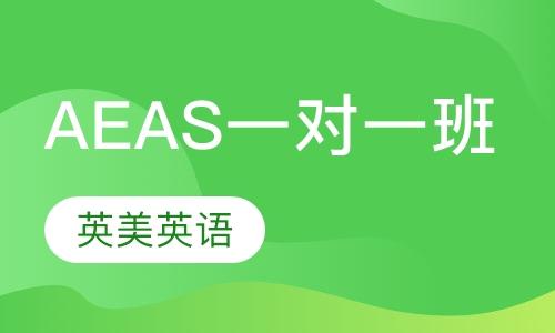 AEAS一对一班