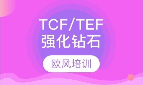 TCF/TEF强化钻石课程