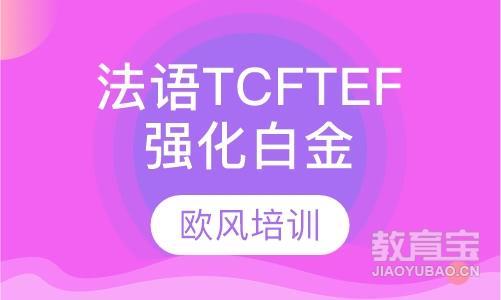 法语TCF/TEF强化白金课程