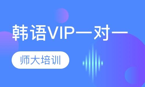 韩语VIP一对一