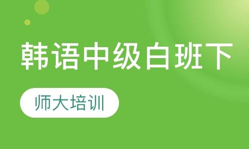 韩语中级白班(下)