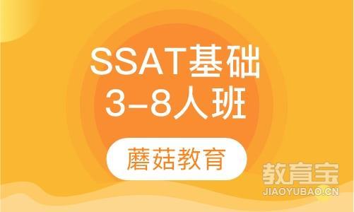 SSAT基础班(3-8人班)