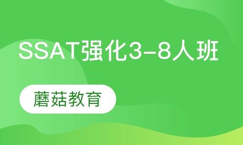 SSAT强化班(3-8人班)