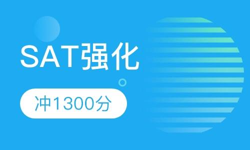 SAT强化冲1300分班(B)