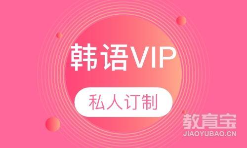 韩语VIP一对一私人订制
