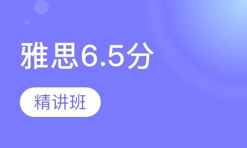 雅思6.5分精讲班