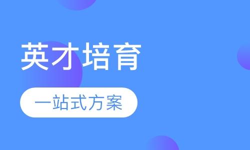 上海出国带薪实习