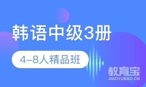 韩语中级3册4-8人精品班