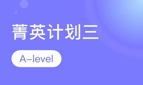 A-level菁英计划三