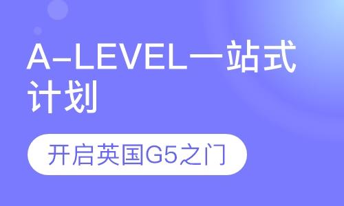 A-level菁英VIP计划一