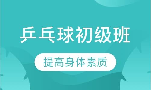 上海乒乓球一对一