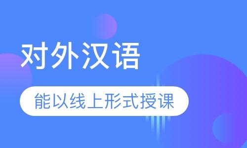 对外汉语1对1课程