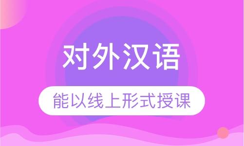 对外汉语业余制小班