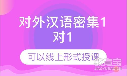 对外汉语密集1对1