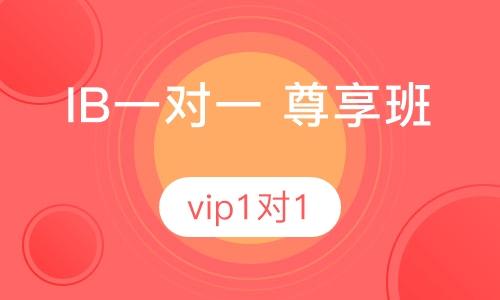 ib vip1对1 尊享班