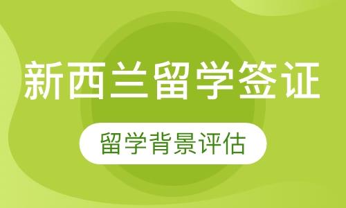 深圳代办出国签证