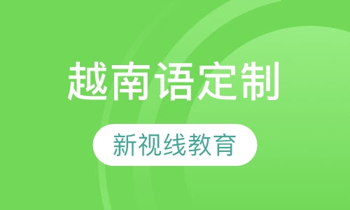 南京新视线双十一越南语定制班开课啦