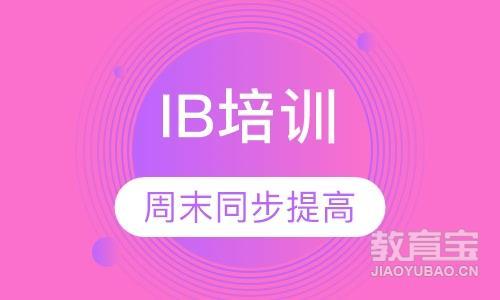 IB 1V1或2-4人小班 周末同步提高课程