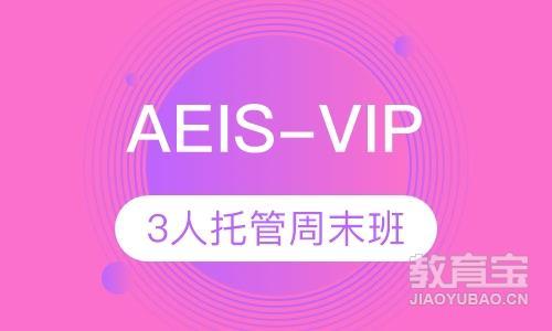 AEIS-VIP3人托管周末班