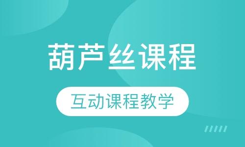 上海葫芦丝基础学习
