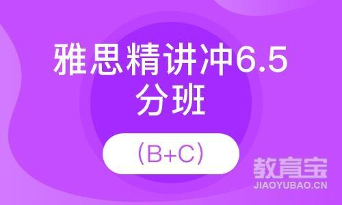 雅思精讲冲6分(15人班)