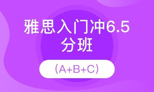 雅思入门冲6.5分(15人班)
