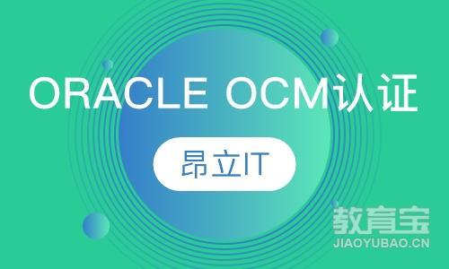 上海oracle周末班
