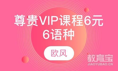 尊贵VIP课程6元6语种