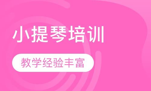 天津小提琴培训学校