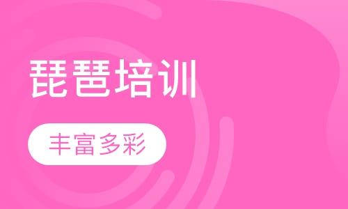 深圳学琵琶入门