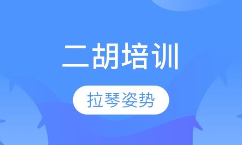 深圳二胡学习班