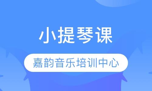 郑州小提琴零基础培训班