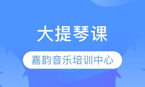 郑州成人大提琴培训中心