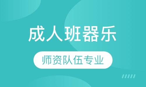 武汉老年人学葫芦丝