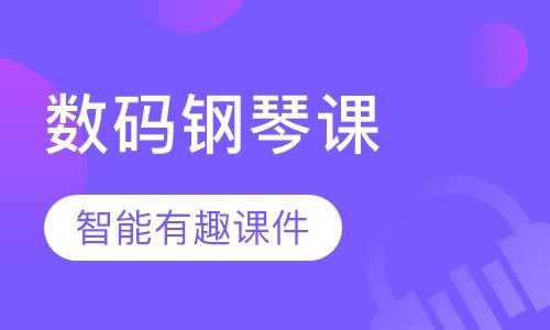 广州罗兰数码钢琴课程