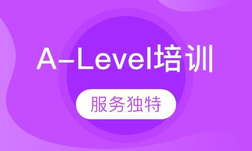上海alevel学校