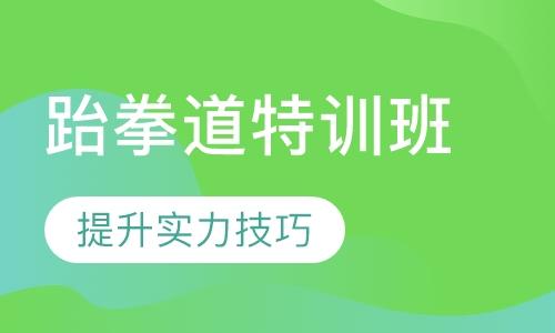 广州跆拳道特训班