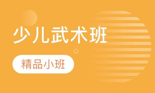 深圳少儿武术学习班