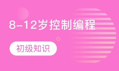广州编程机构儿童