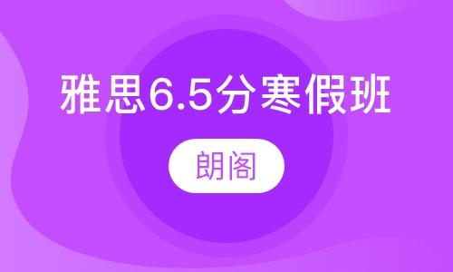 北京雅思6.5分寒假冲刺班