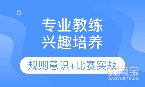 郑州初中篮球培训基地