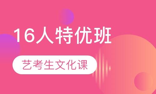 武汉艺术生文化课培训机构