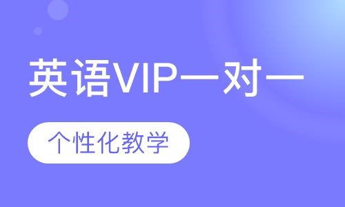 VIP一对一
