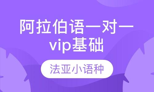 阿拉伯语、荷兰语、越南语一对一vip基础课程