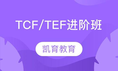 TCF/TEF进阶班