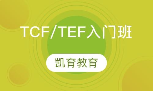 TCF/TEF入门班